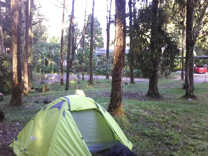 Camping cameron highlands