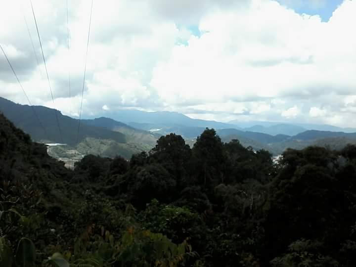 Montagne cameron higlands