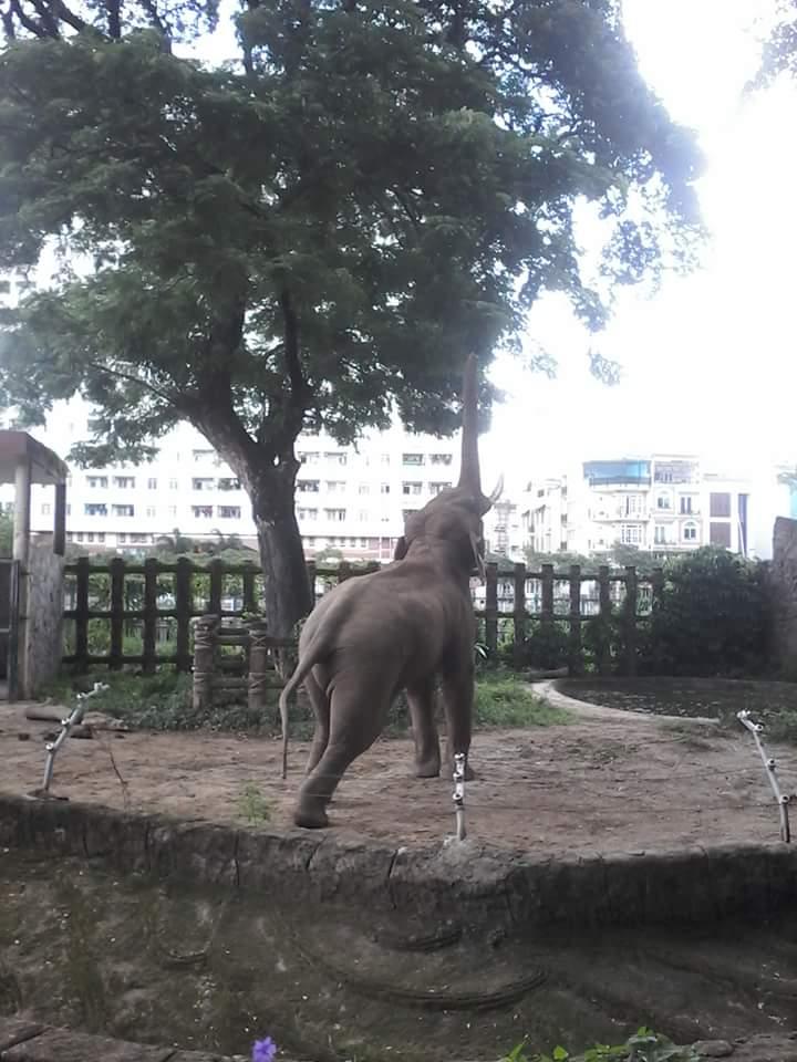 Jardin zoologique et botanique