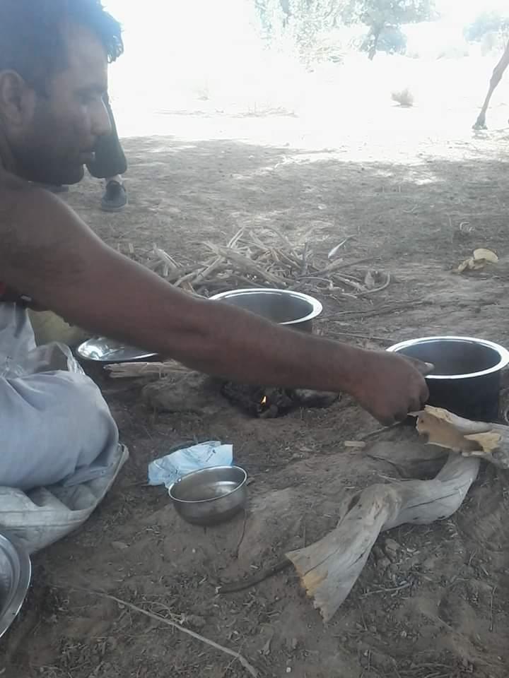 Manger safari désert jaisalmer chameau