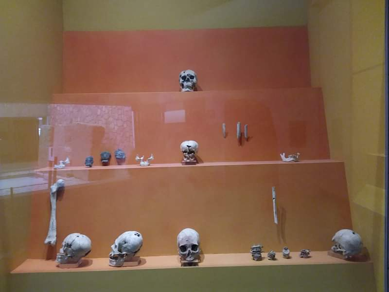 Musée monte alban