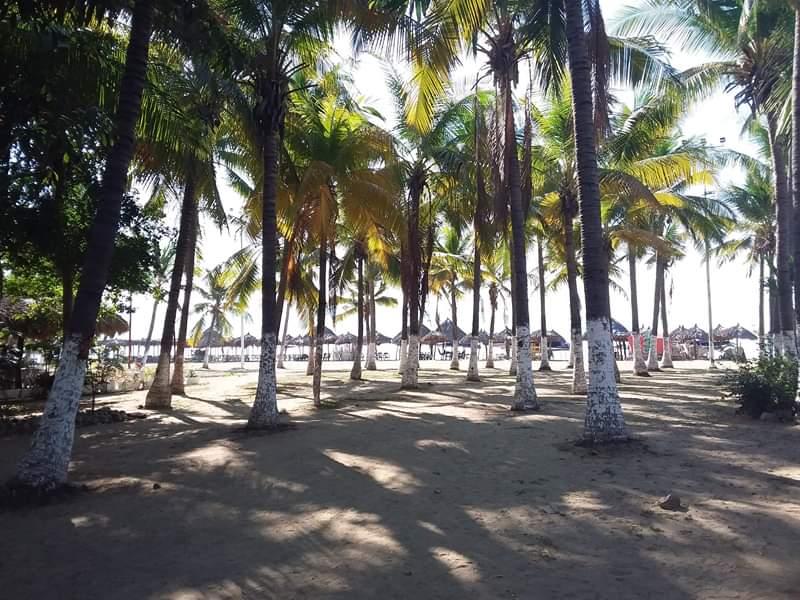 Plage de chaises acapulco
