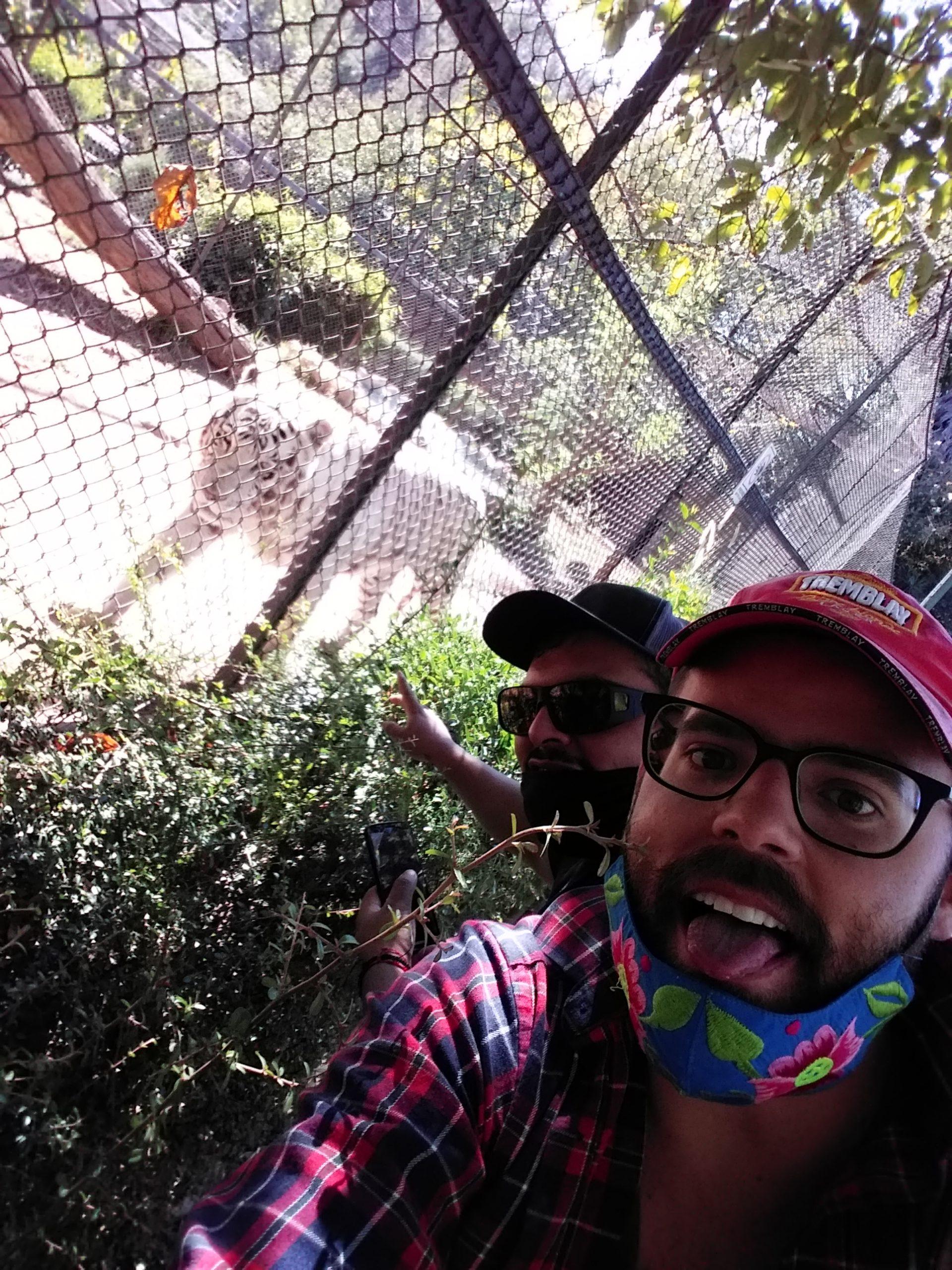 Zoo morelia