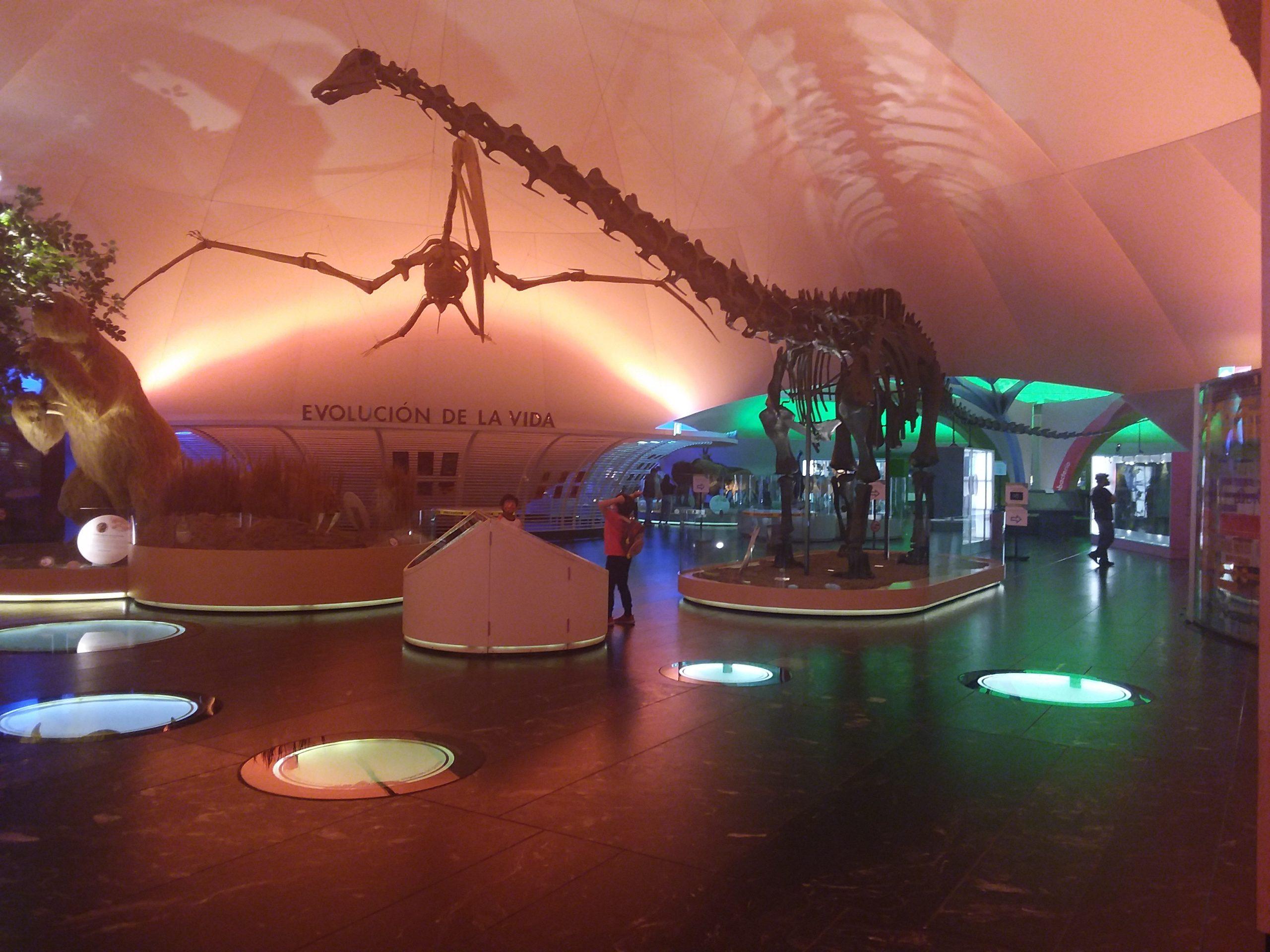 Musée histoire naturelle mexico